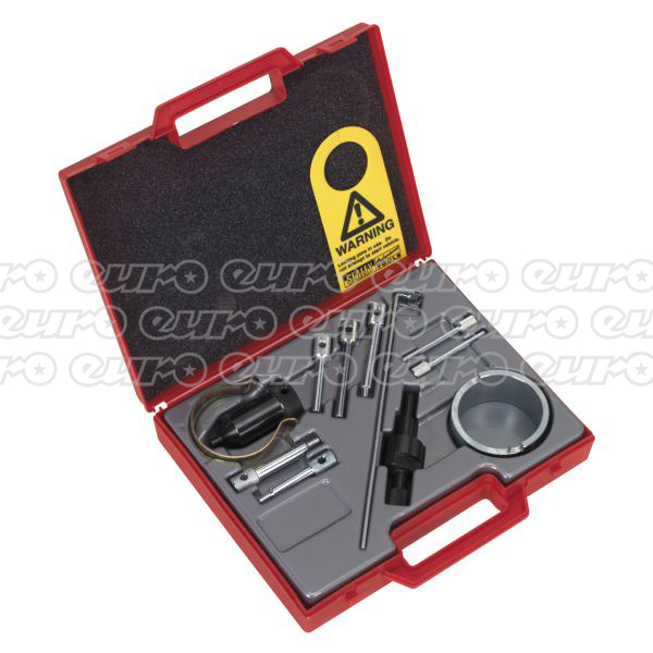 VS4825 Petrol Engine Twin Camshaft SettingLocking Tool KitPSA EW